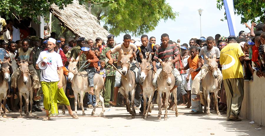 Lamu Festival